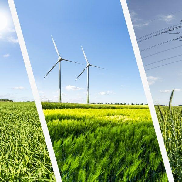 Master Energy Management e Sostenibilità Ambientale