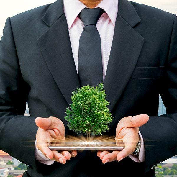 Master Strategia e Gestione della Sostenibilità Aziendale
