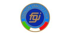 FEDERAZIONE GINNASTICA D ITALIA